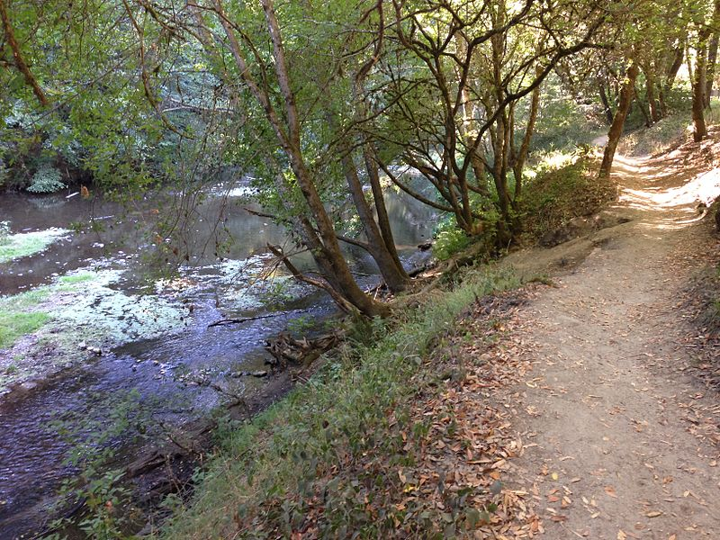 Exploring Santa Cruz: The San Lorenzo River
