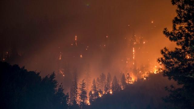 When Wildfire Comes to Santa Cruz