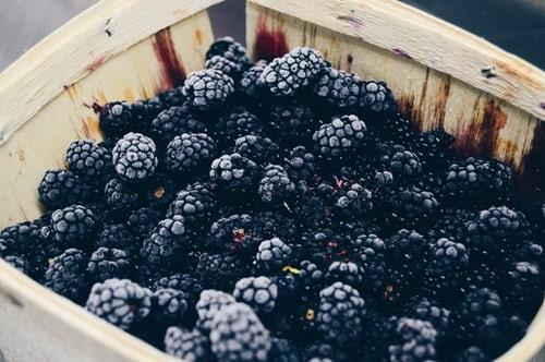 Jane Meredith Daugherty – Berries