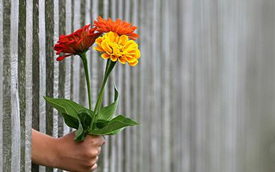 Setting Compassionate Boundaries