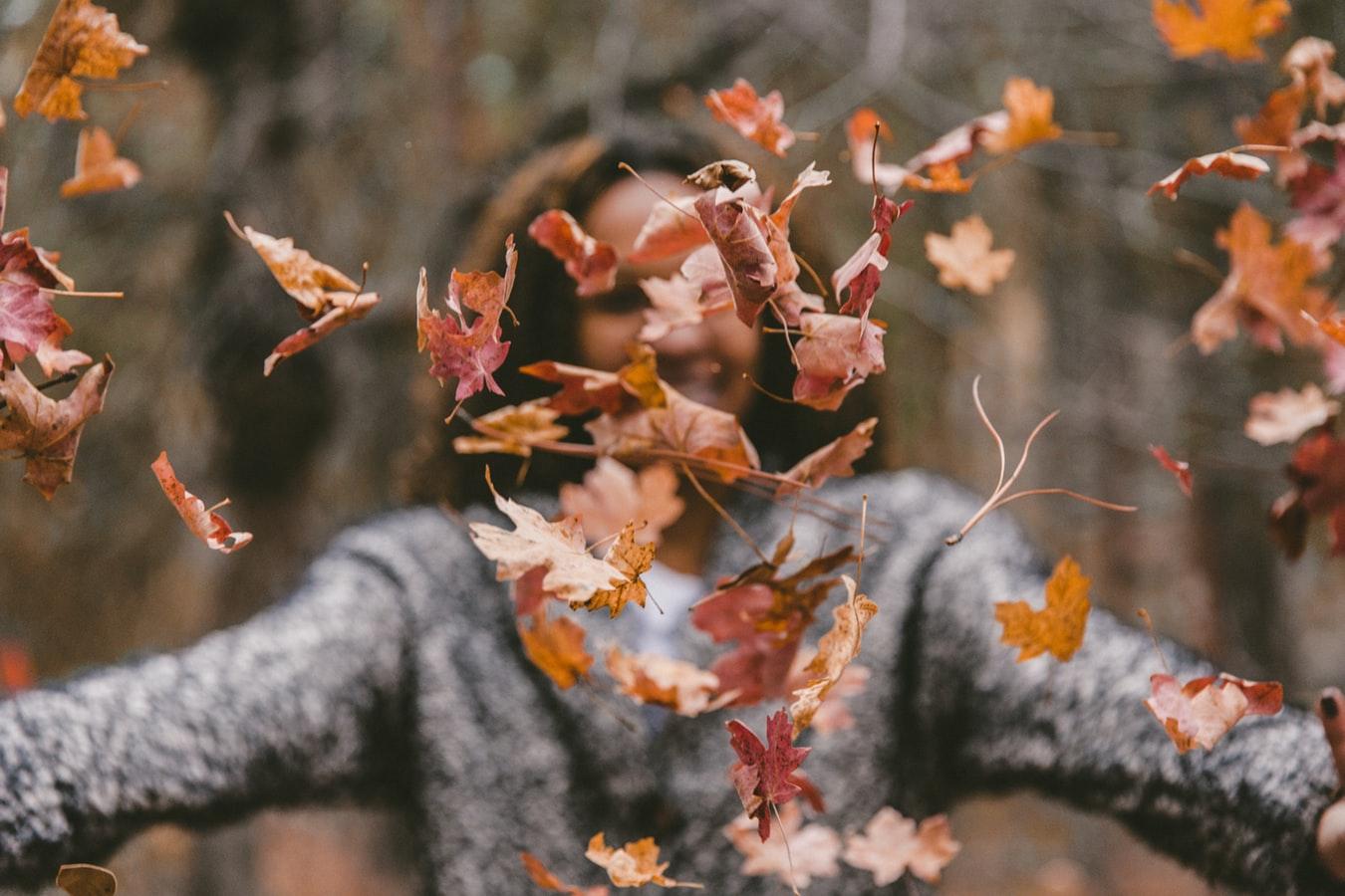 Patrice Vecchione – Autumn