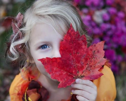 Laurie Corn – Autumn