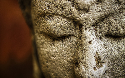 What the Buddha Taught: The Wisdom of the Four Noble Truths