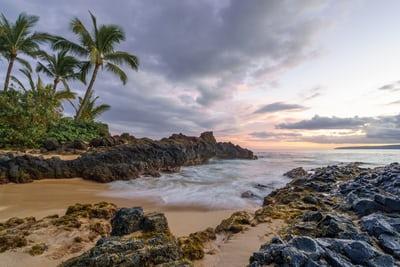 Penny Mudd – Aloha
