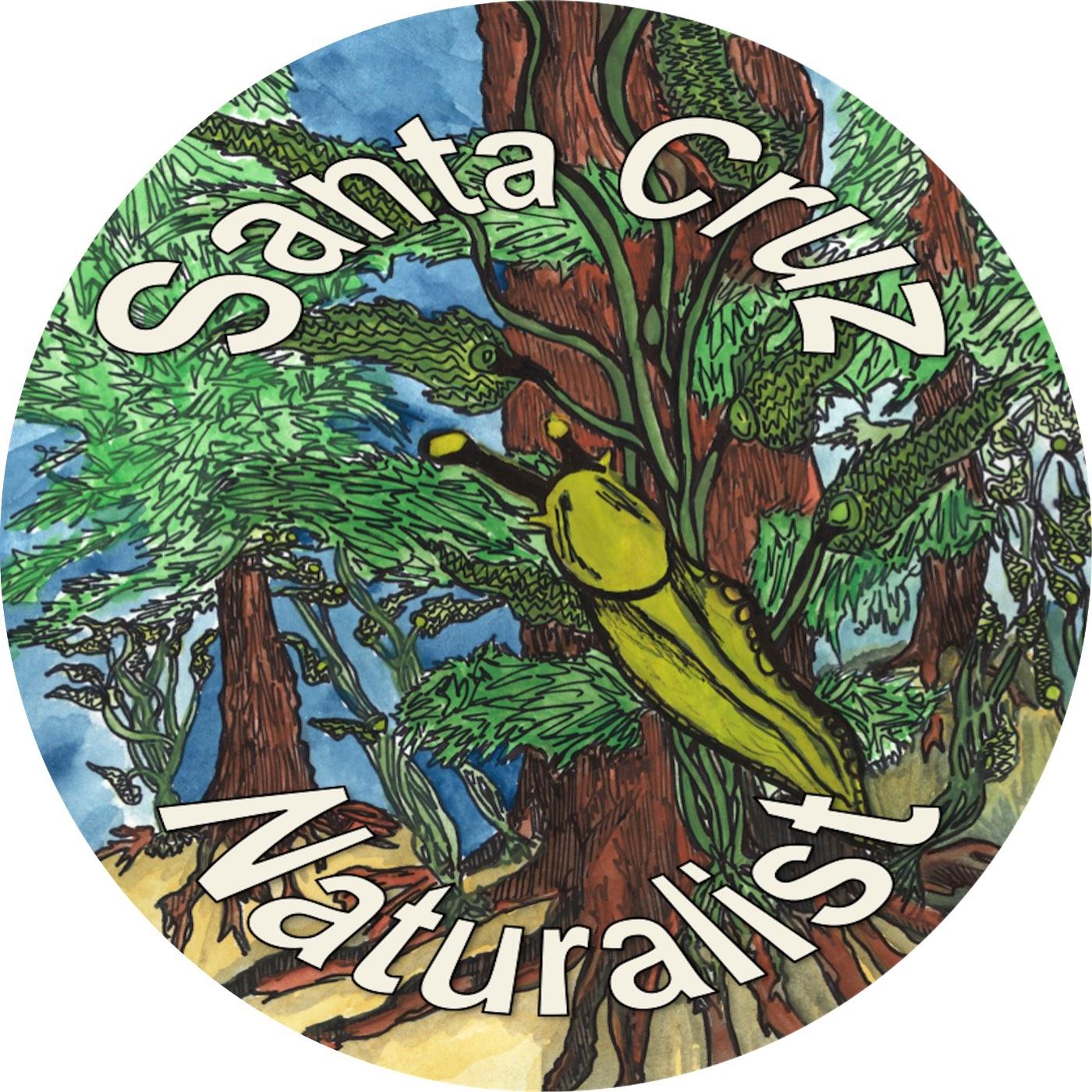 Santa Cruz Naturalist