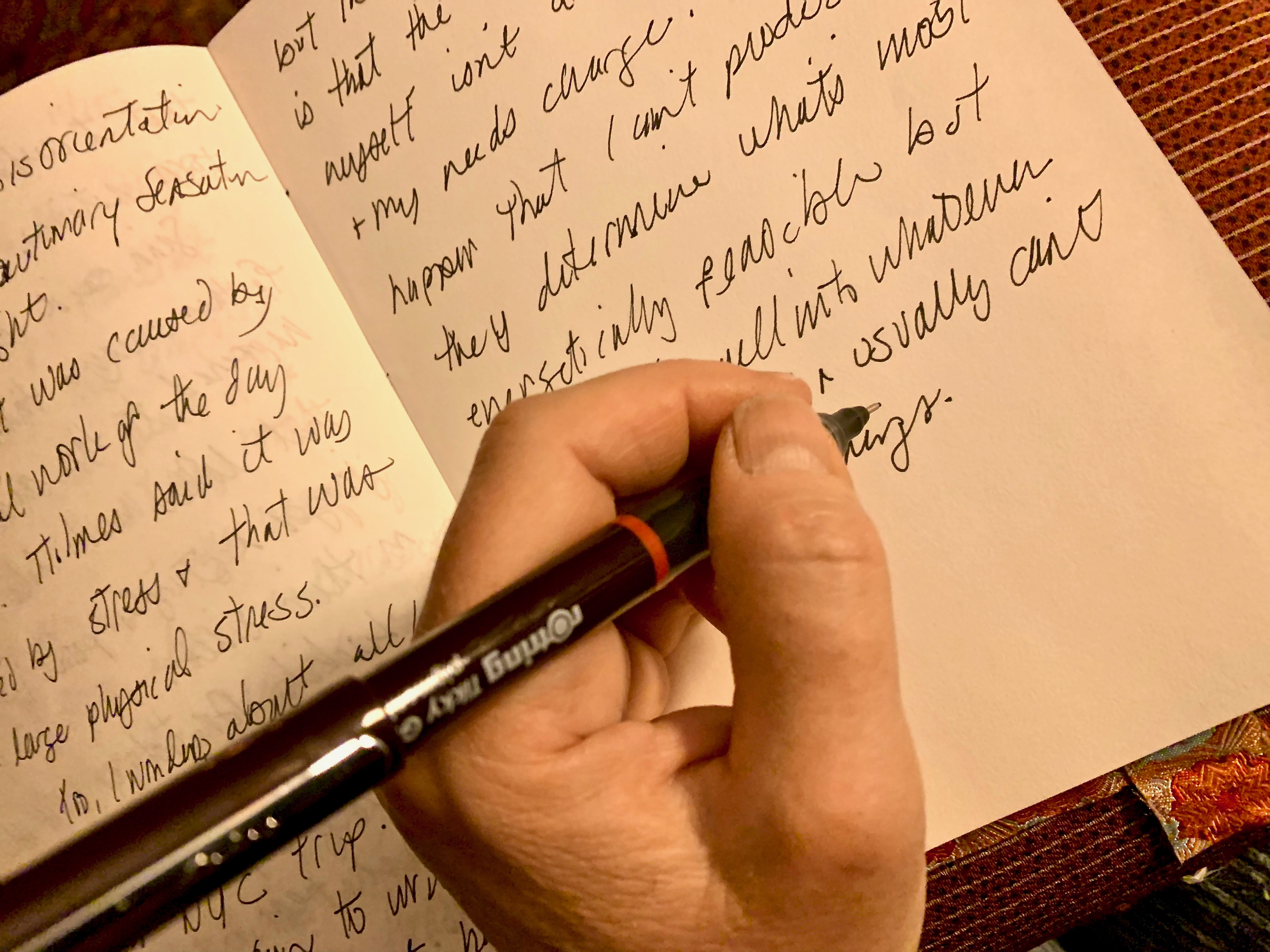 Patrice Vecchione – A Writer's Life