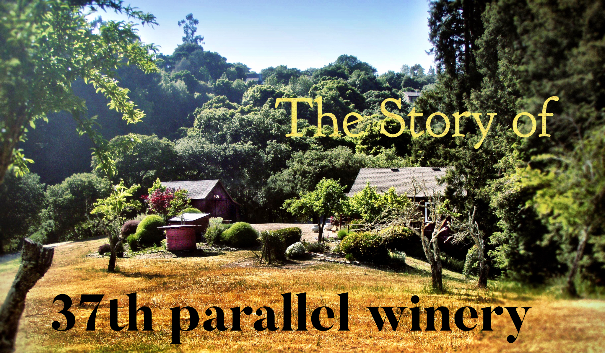 Les Wright 37th Parallel Winery