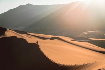 Dick Harrah – Sand Dune God