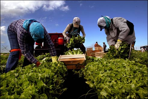 Protecting Farmworker Health:Luis Alejo on Covid-19 Protocols