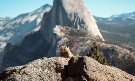 Raquel Holyoak – Mountain Epiphany
