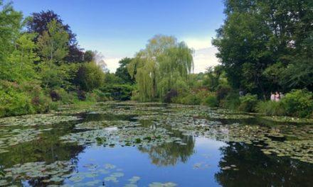 Gilda Zelin – Monet's Garden