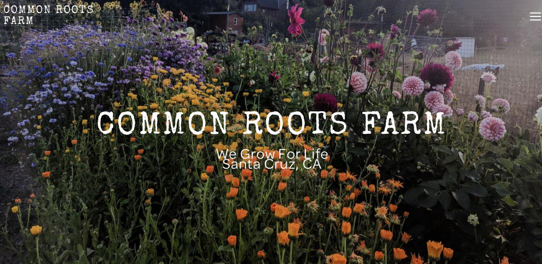 Common Roots Farm