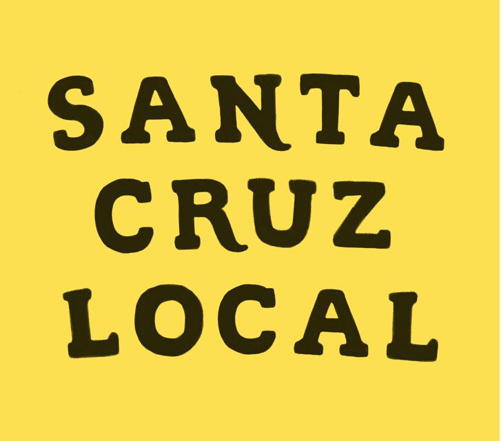 Santa Cruz Local a New News Service