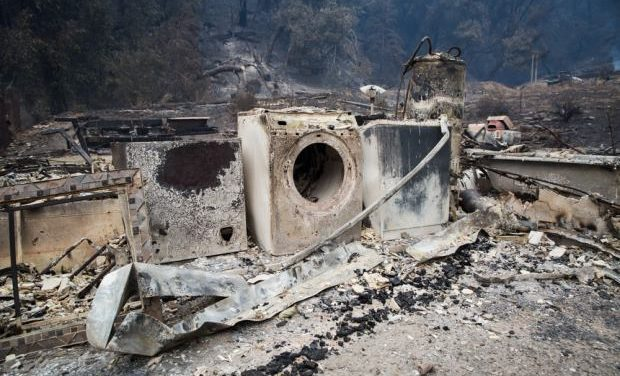 Removing Environmental Hazards After Wildfire