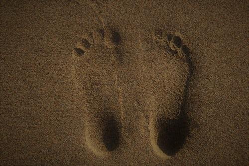 Kate Pearl – Carbon Footprint