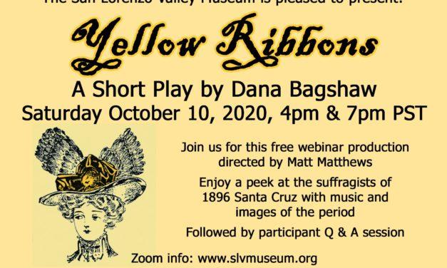 A Conversation with Dana Bagshaw, Santa Cruz playwright