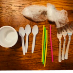 """Sustainability Now!  Dec. 27: Are we Becoming """"Plastic People of the Universe"""" Or, What does """"biodegradable"""" really mean?"""