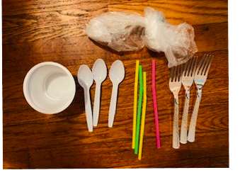 "Sustainability Now!  Dec. 27: Are we Becoming ""Plastic People of the Universe"" Or, What does ""biodegradable"" really mean?"