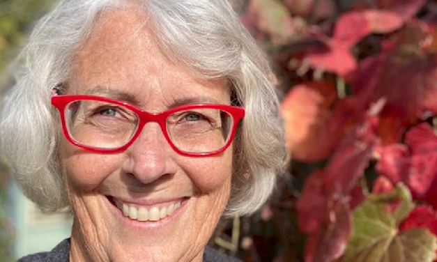 Multitudes of Connection: Permaculture and Societal Transformation with Timmi Pereira