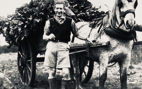 Alan Ritch – Farming Dad