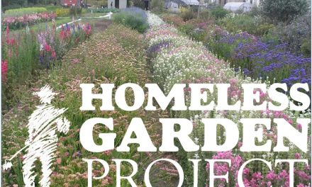 The Homeless Garden Project – a harvest of hope and transformation