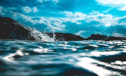 Bahia Brunelle – Oceans
