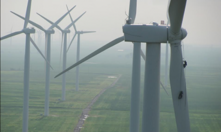 Rope Partner of Santa Cruz: Caring for Wind Turbines and the Environment