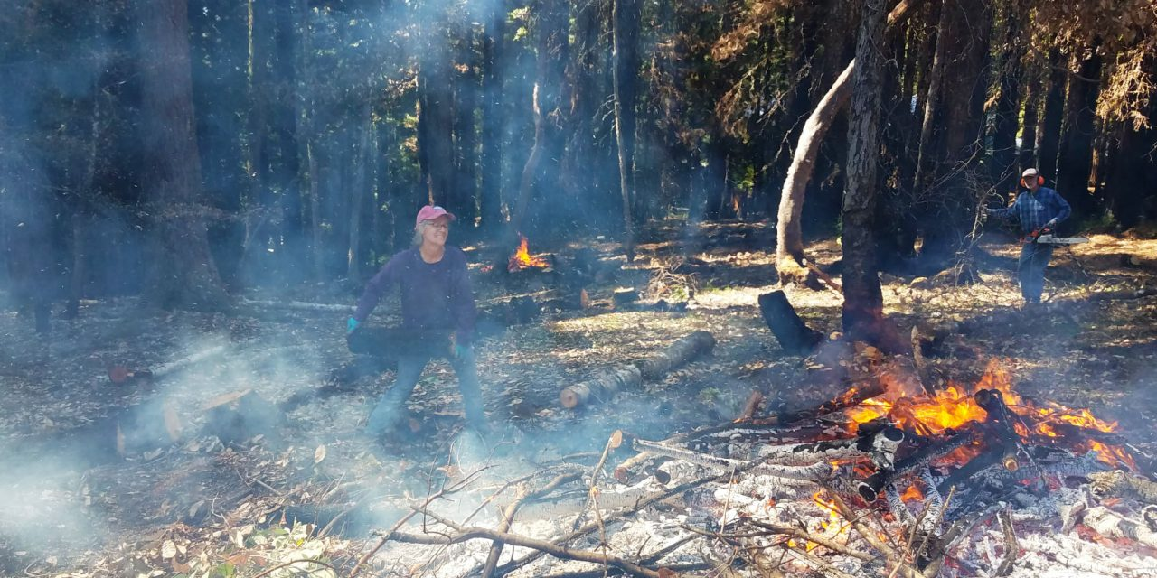Preventing Future Fires with Defensible Space