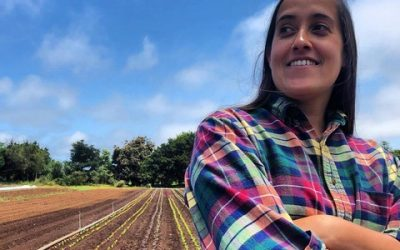 Political Report on Talk of the Bay, Tuesday, May 25, with Chris Krohn: Bringing the Green New Deal Home to Santa Cruz
