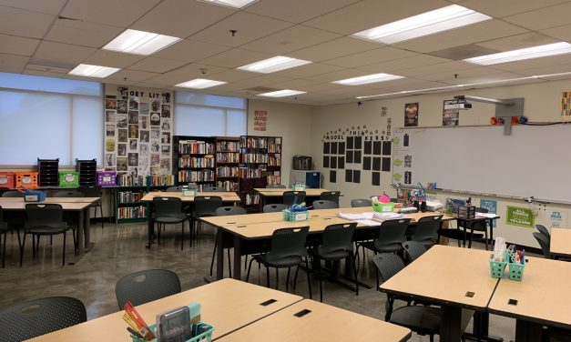 Roomies and Zoomies go back to school