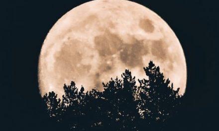 Bahia Brunelle – Full Moon Festival