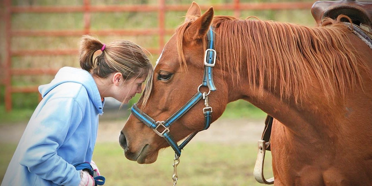 Equine-Assisted Therapy in Santa Cruz County