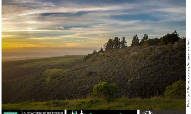 Cotoni-Coast Dairies – a new National Monument on Santa Cruz's north coast prepares to open