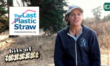 Sustainability Now!  July 25, 5-6 PM: That's the Last Straw! with Jackie Nuñez, founder of The Last Plastic Straw