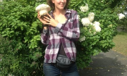 Sustainability Now! Sunday, October 3rd, 5-6 PM: There's Fungus Among Us–Mycopermaculture, Mycomimicry, and Mycopsychology, with Maya Elson of CoRenewal